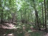 1435 White Pine - Photo 14