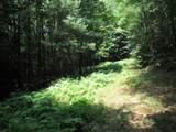 1435 White Pine - Photo 15
