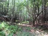 1435 White Pine - Photo 17