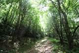 1435 White Pine - Photo 67