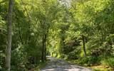 TBD Smith Creek Road - Photo 14