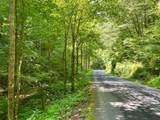 TBD Smith Creek Road - Photo 16