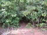 TBD Gunney Sack Trail - Photo 24