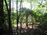 TBD Gunney Sack Trail - Photo 36