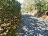 132 Hollow Tree Rd - Photo 30