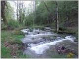 12378 Garrett Creek Road - Photo 16