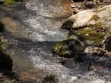 128 Johnson Creek - Photo 6