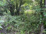 145 Cedar Branch Rd - Photo 4