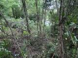 145 Cedar Branch Rd - Photo 5