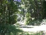 TBD Pumpkin Lane - Photo 18