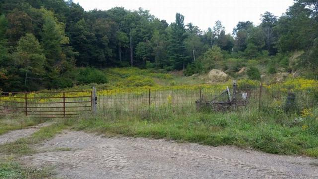 TBD Cherry Tree Road, Chilhowie, VA 24319 (MLS #62661) :: Highlands Realty, Inc.