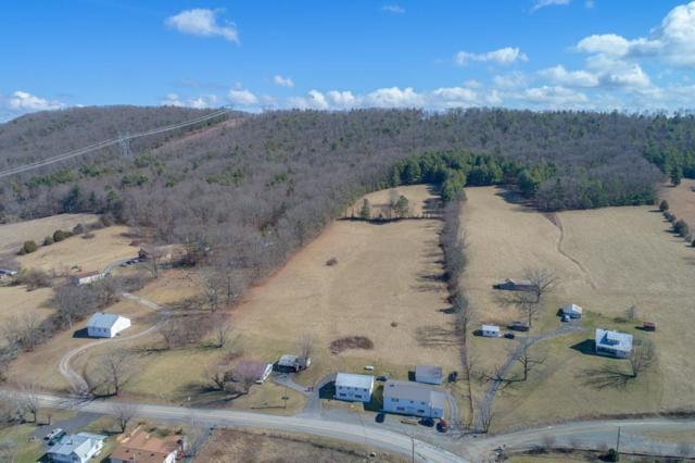 2065 Castleton Rd, Max Meadows, VA 24360 (MLS #63694) :: Highlands Realty, Inc.