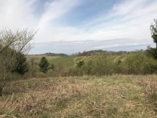 TBD Shuler Hollow Road, Chilhowie, VA 24319 (MLS #63966) :: Highlands Realty, Inc.