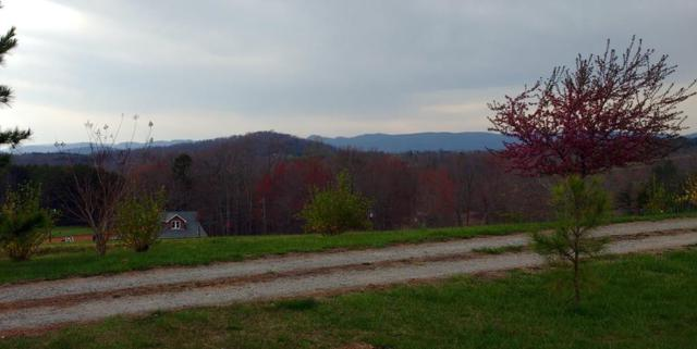 TBD Old Orchard Loop, Stuart, VA 24171 (MLS #64129) :: Highlands Realty, Inc.