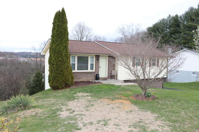 219 Ashley Drive, Bristol, VA 24201 (MLS #64220) :: Highlands Realty, Inc.