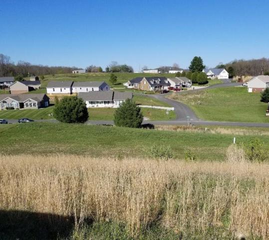 TBD Chase Lane, Abingdon, VA 24210 (MLS #64310) :: Highlands Realty, Inc.