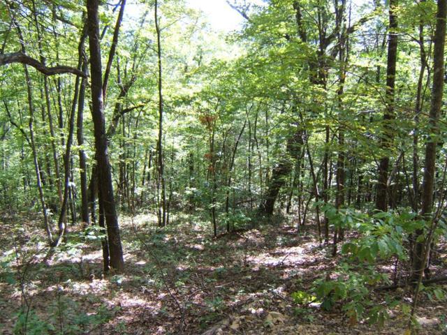 TBD North Fork River Rd  Lot 19, Abingdon, VA 24210 (MLS #64681) :: Highlands Realty, Inc.