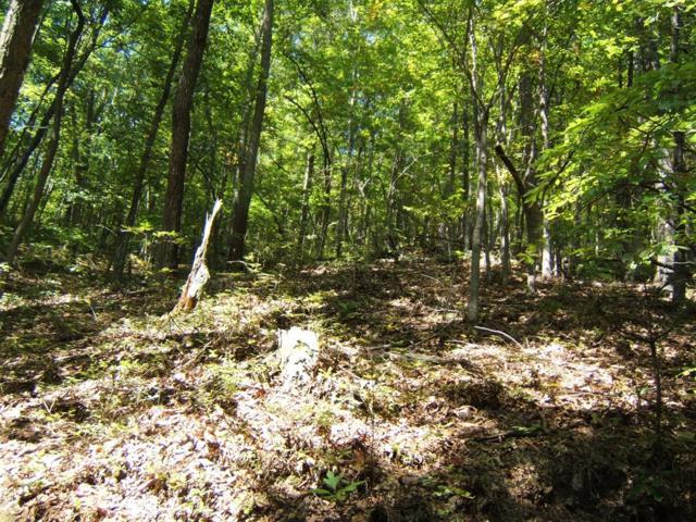 TBD North Fork River Rd  Lot 20, Abingdon, VA 24210 (MLS #64683) :: Highlands Realty, Inc.