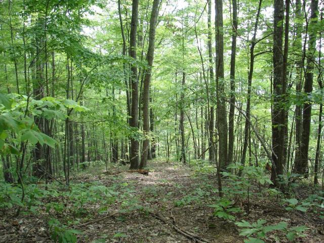TBD North Fork River Rd  Lot 25, Abingdon, VA 24210 (MLS #64687) :: Highlands Realty, Inc.