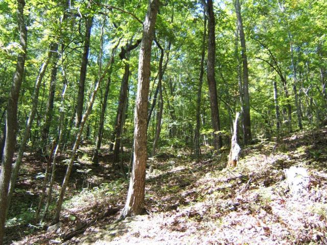 TBD North Fork River Rd  Lot 26, Abingdon, VA 24210 (MLS #64688) :: Highlands Realty, Inc.