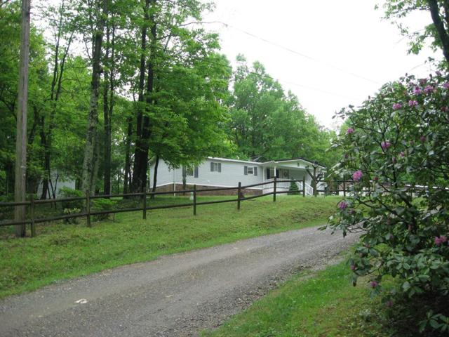 957 Apache Trail, Fancy Gap, VA 24328 (MLS #64818) :: Highlands Realty, Inc.
