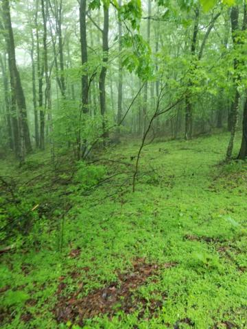 TBD Cascade Trail, Fancy Gap, VA 24328 (MLS #64823) :: Highlands Realty, Inc.