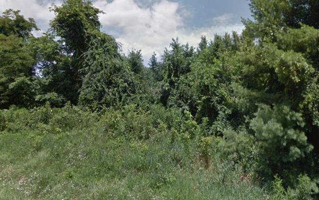 Lot 22 Pleasant Grove Road, Independence, VA 24348 (MLS #64979) :: Highlands Realty, Inc.