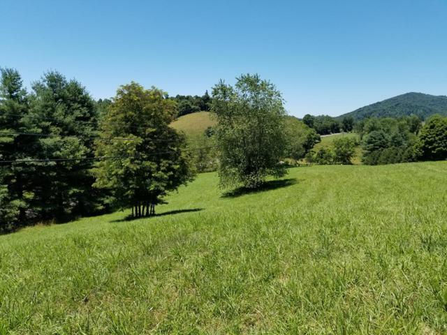 TBD Deer Ridge Dr, Independence, VA 24348 (MLS #65612) :: Highlands Realty, Inc.