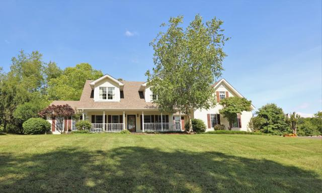 14525 Branch St, Abingdon, VA 24210 (MLS #65698) :: Highlands Realty, Inc.