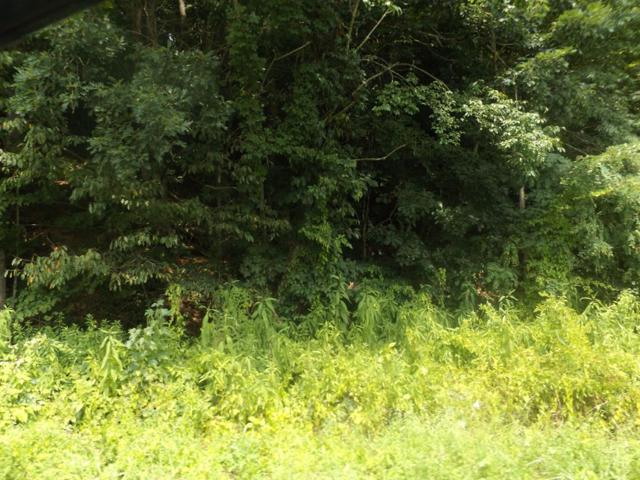 TBD St Clair Creek Rd, Chilhowie, VA 24319 (MLS #65714) :: Highlands Realty, Inc.