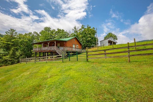 2764 Shady Branch Circle, Narrows, VA 24124 (MLS #65881) :: Highlands Realty, Inc.