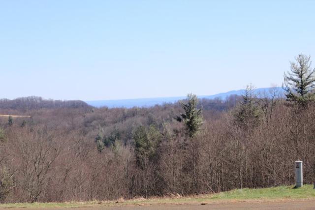 tbd Continental Drive, Hillsville, VA 24343 (MLS #65981) :: Highlands Realty, Inc.