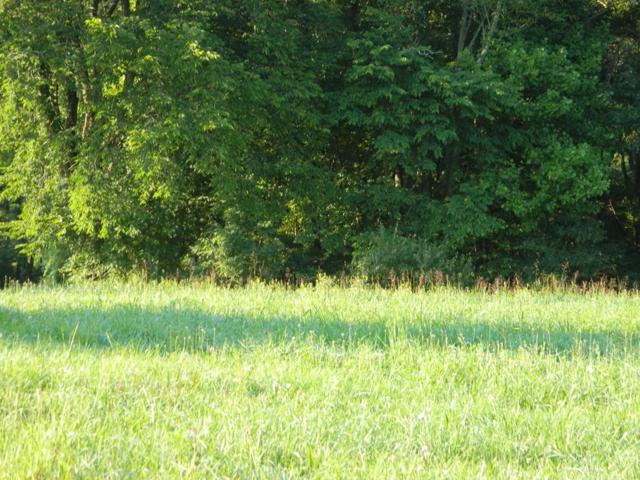 TBD Red Stone Road, Chilhowie, VA 24319 (MLS #66019) :: Highlands Realty, Inc.