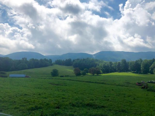 TBD Town Springs Rd., Chilhowie, VA 24319 (MLS #66108) :: Highlands Realty, Inc.