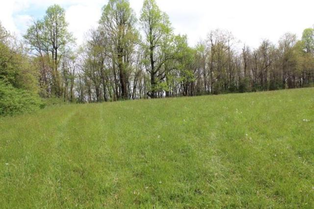 0 Cloud Break Road, Meadows of Dan, VA 24120 (MLS #66268) :: Highlands Realty, Inc.