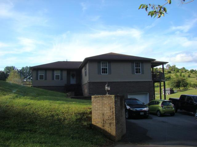235 Rosedale Cir, Rosedale, VA 24280 (MLS #66660) :: Highlands Realty, Inc.