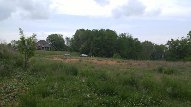TBD Great View Drive, Cedar Bluff, VA 24609 (MLS #66865) :: Highlands Realty, Inc.