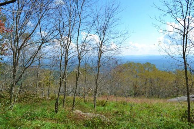 T 5 Running Bear Ct, Independence, VA 24348 (MLS #66980) :: Highlands Realty, Inc.