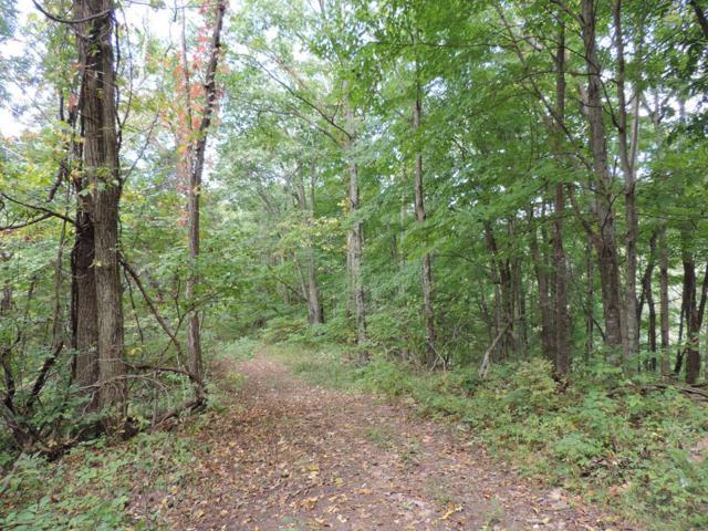TBD Route 774, Lebanon, VA 24266 (MLS #67028) :: Highlands Realty, Inc.