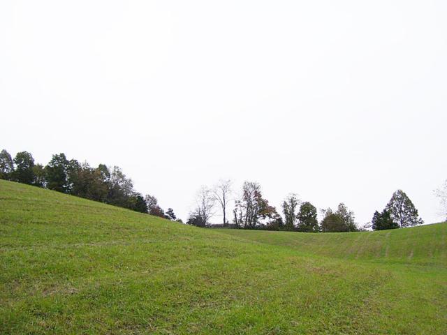 TR. 20 Spur Strap Road, Bristol, VA 24202 (MLS #67148) :: Highlands Realty, Inc.