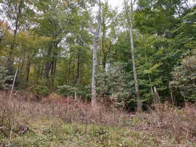 TBD Hidden Valley Lane, Independence, VA 24348 (MLS #67196) :: Highlands Realty, Inc.