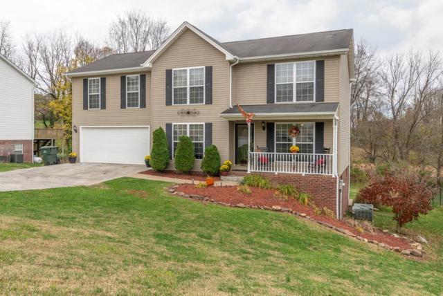 307 Henrys Lane, Bristol, VA 24202 (MLS #67277) :: Highlands Realty, Inc.