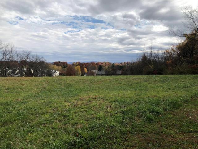 TBD Panacella Drive, Abingdon, VA 24210 (MLS #67287) :: Highlands Realty, Inc.