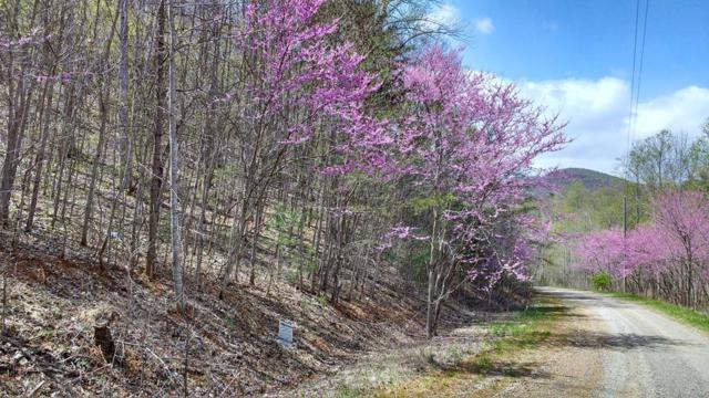 3 Ridgefield Lane, Ferrum, VA 24088 (MLS #67714) :: Highlands Realty, Inc.