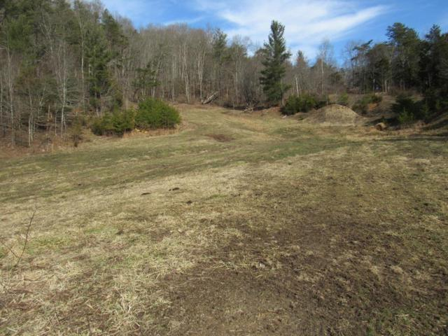 TBD Cherry Tree Road, Chilhowie, VA 24319 (MLS #68012) :: Highlands Realty, Inc.