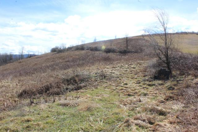 TBD Old Ebenezer, Marion, VA 24354 (MLS #68079) :: Highlands Realty, Inc.