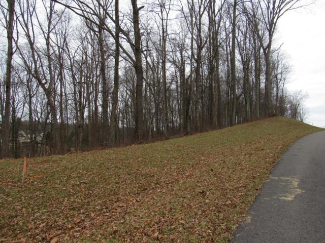 TBD Clifton Ridge Rd, Abingdon, VA 24211 (MLS #68159) :: Highlands Realty, Inc.