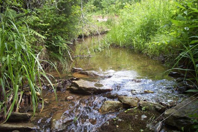 17 Nursery Road, Laurel Fork, VA 24352 (MLS #68334) :: Highlands Realty, Inc.