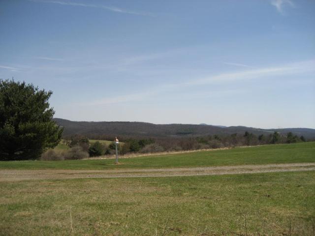 TBD Alpine Ridge Lane, Meadows of Dan, VA 24120 (MLS #68453) :: Highlands Realty, Inc.