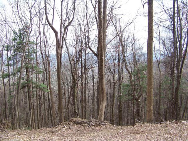 TBD Mountaineer Way, Fancy Gap, VA 24328 (MLS #68942) :: Highlands Realty, Inc.